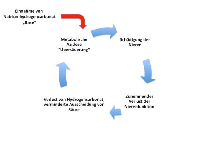 Teufelskreis Übersäuerung des Blutes